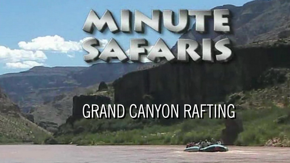 Minute Rafting Safari
